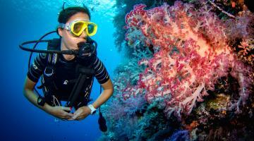Где в интернете можно купить качественное снаряжение для дайвинга и подводной охоты