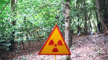 В Чернобыльской зоне отчуждения задержали двух иностранцев