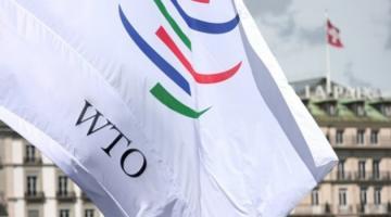 Украина поддержала декларацию ВТО по малому и среднему бизнесу