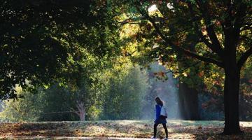Как не впасть в депрессию и стать счастливееСюжет