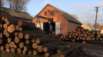 В Харьковской области будут судить 8 чиновники лесхоза, нанесших ущерб государству на сумму около 100 млн грн