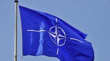Решение о вступлении Украины в НАТО должен принять народ – Полторак