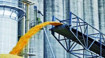 В Украине собрали почти 62 миллиона тонн зерновых