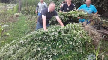 В Винницкой области полиция изъяла у сельской жительницы около 10 кг наркотиков