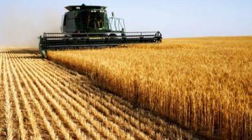 Аграрии собрали 2,7 млн тонн зерна нового урожая