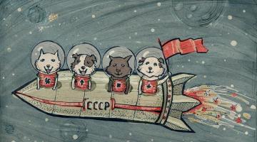 Лайка все еще хочет домой: честная история первых собак-космонавтов