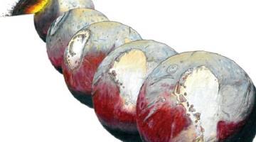 Под ледяным «сердцем» Плутона, скорее всего, огромный океан