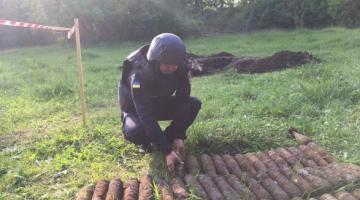 В Винницкой области в парке обнаружили более 600 боеприпасов времен Второй мировой войны