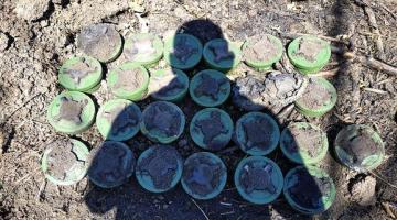 В районе Водяного украинские саперы обезвредили 25 российских противопехотных мин
