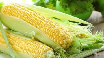 Стало відомо, чому зростає ціна на українську кукурудзу