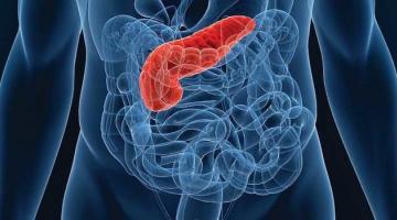 Представлен биопринтер, печатающий клетки поджелудочной железы для диабетиков