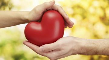 Американские ученые напечатали на 3D-принтере работающую сердечную мышцу