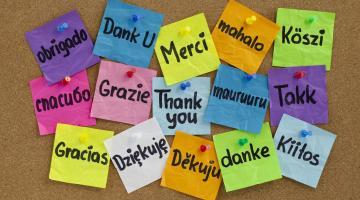 12 надежных правил, выведенных полиглотами