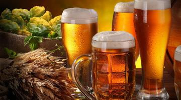 Что может заинтересовать любителя пива?